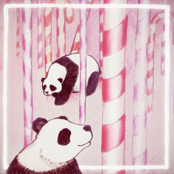 Panda Candy by Helen Askew