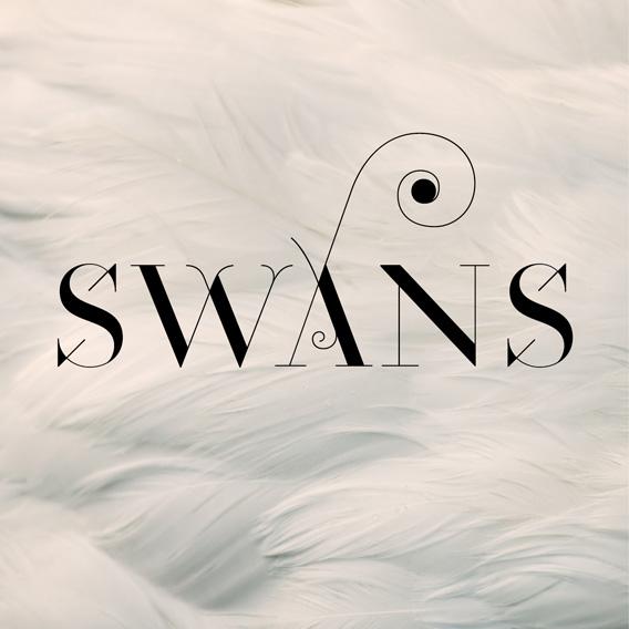 Swans Mixtape Mandy Fleetwood